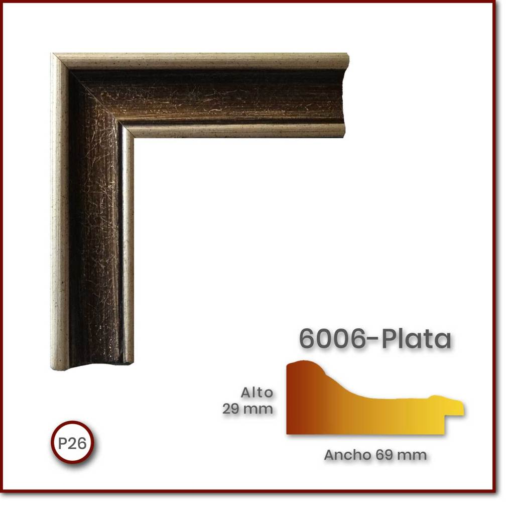 6006_Plata_69x29_P26