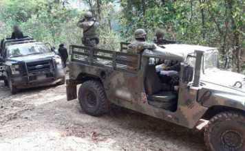 operativo-bosque-Policia-Michoacan-Ejercito