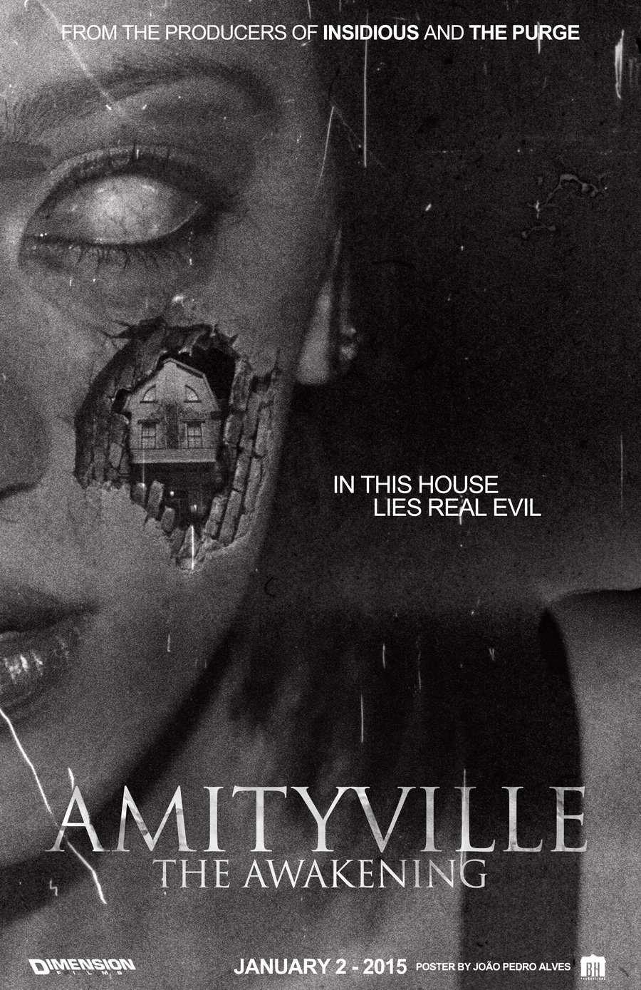 _amytiville__the_awakening__movie_poster_by_johnyisthedevil-d8ozx18