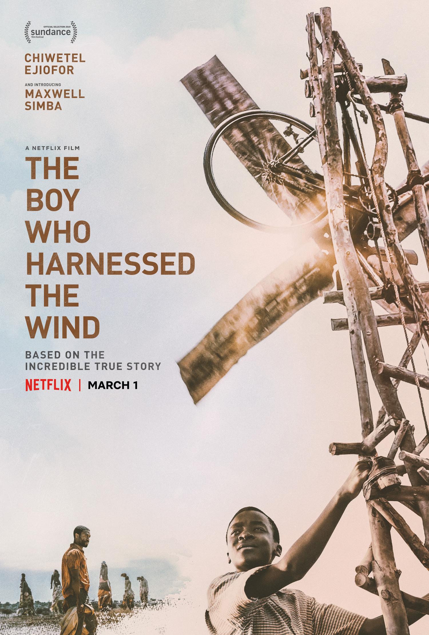 El niño que domó el viento poster.jpg