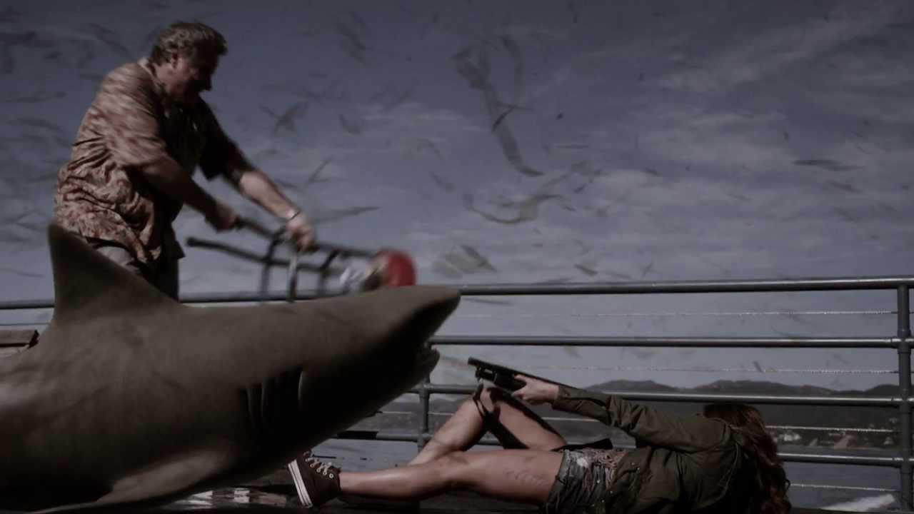 shark 1.jpg