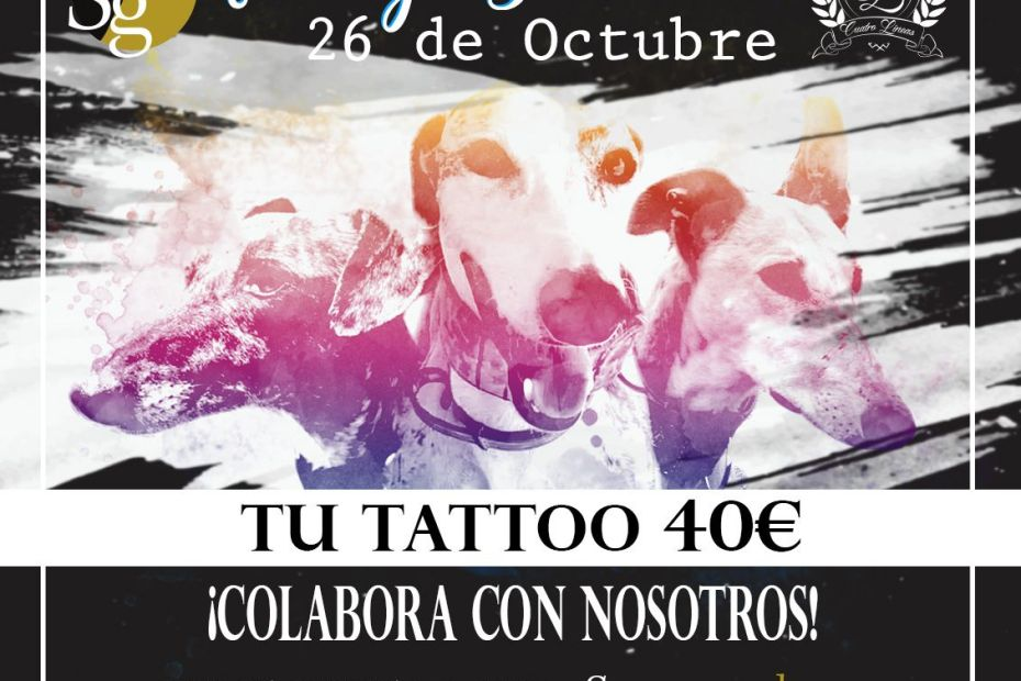 tatuaje solidario galgos madrid, tatuaje oferta, tatuaje promoción