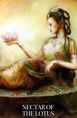 kuan yin oracle nectar of the lotus