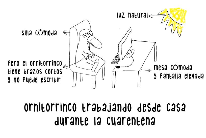 Trabajar o estudiar desde casa ornitorrinco productivo