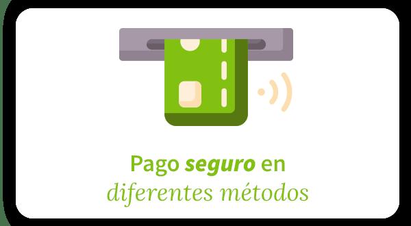pago seguro con diferentes métodos (tarjeta etc)