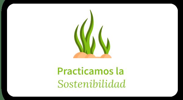 practicamos la sostenibilidad