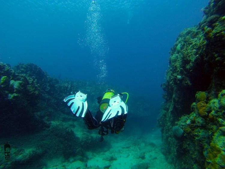 Buceo en Playa Salado / Dive in Playa Salado