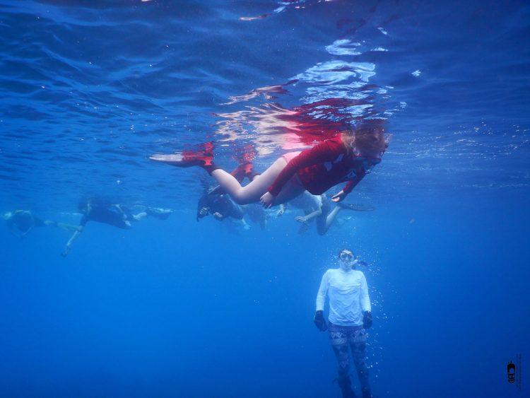 snorkeling en Punta Perdiz