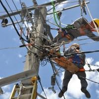 ¿La cura contra el fraude eléctrico?