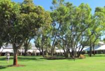 australia-perth-by-kirstin-bebell-murdoch-grounds-2012-murdoch-university-2