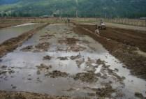 bhutan-bumthang-by-lindsey-weaver-fieldwork-2006