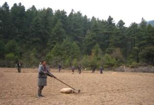 bhutan-by-lindsey-weaver-tilling-the-fields-2006