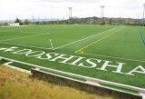 japan-kyoto-from-website-doshisha-university-21