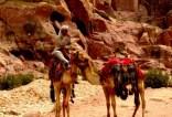 jordan-petra-by-megan-wood-kissing-camels1