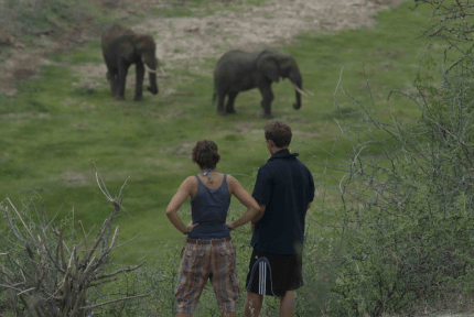 tanzaniags_by-laura-deluca-students-watching-elephants-20112