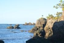 brazilgs_-colleen-scanlan-lyons-oceanview-2014