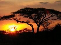 tanzaniags_by-alicia-davis-sunset-2011