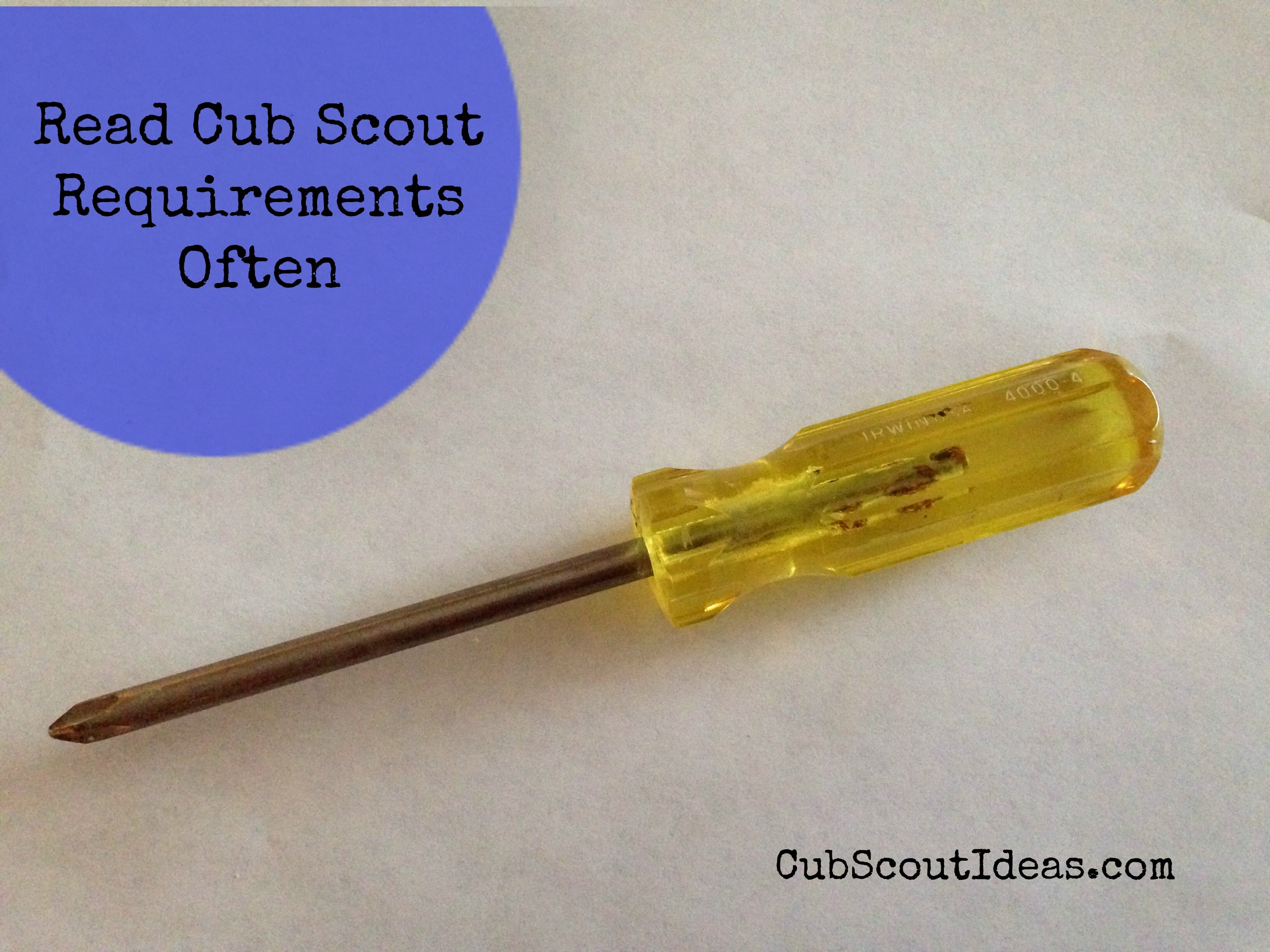 Review Cub Scout Requirements Often
