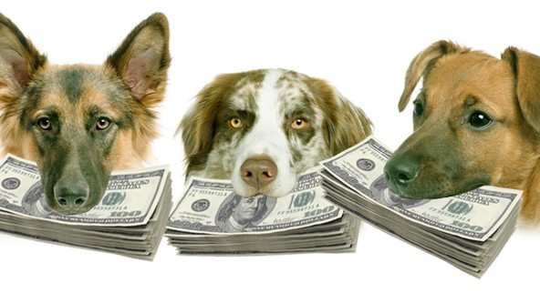 01202012_Dogs_Money_article