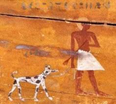 cane_egizio
