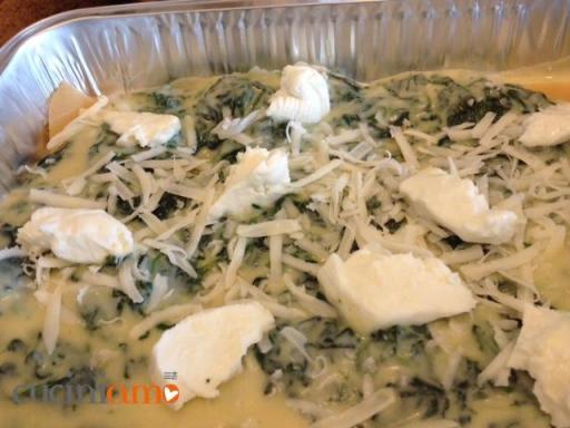 lasagne coperte con besciamella, spinaci, caprino e stracchino di bufala