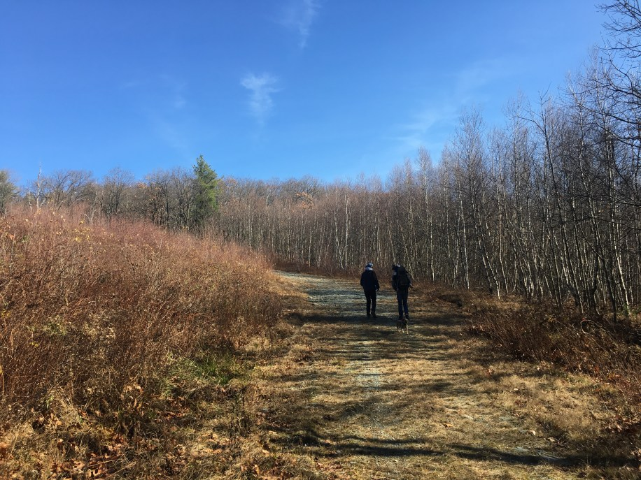 hiking from NY to Mass