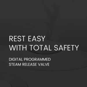 Digital Programmed steam release valve