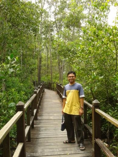 Banyaknya pokok paya bakau. Sepanjang jambatan ni, ade info tentang paya bakau disekeliling kita