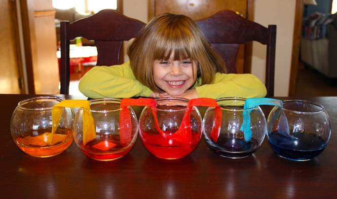 spring break craft ideas: rainbow water transfer experiment