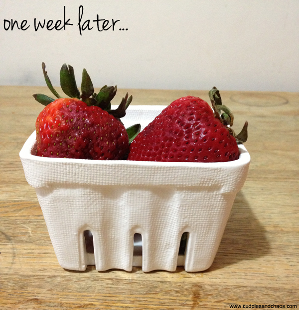 Cuddles and Chaos   keep fruit fresh longer