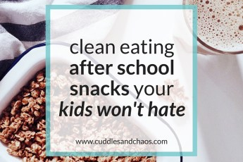 20 clean eating after school snack ideas that kids won't hate