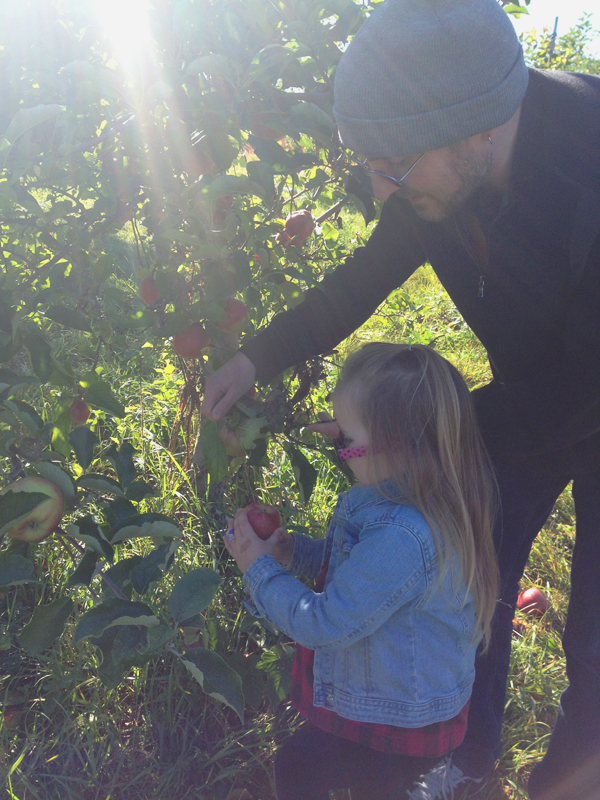 Wilkens Farm apple picking