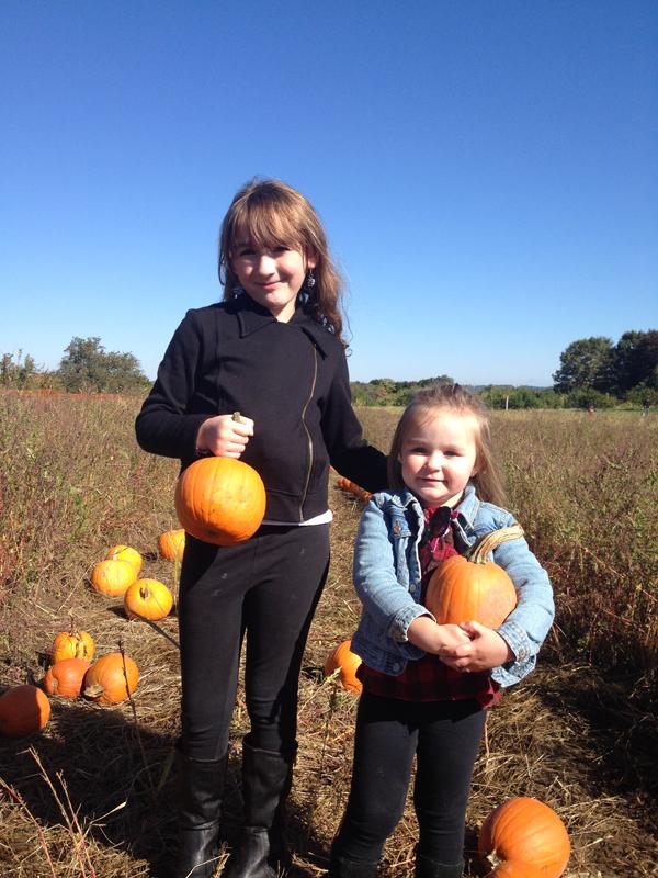 Wilkens Farm pumpkins