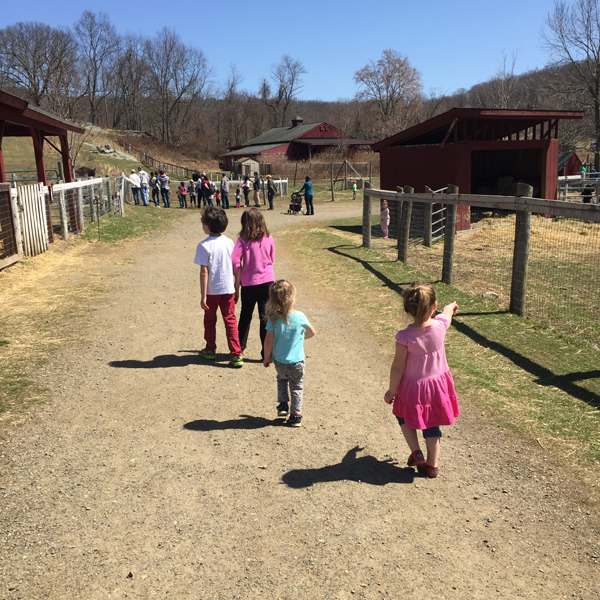 Muscoot Farm outdoor fun for Westchester kids