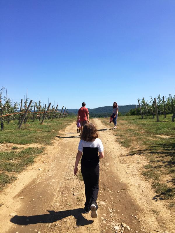 exploring Fishkill Farms
