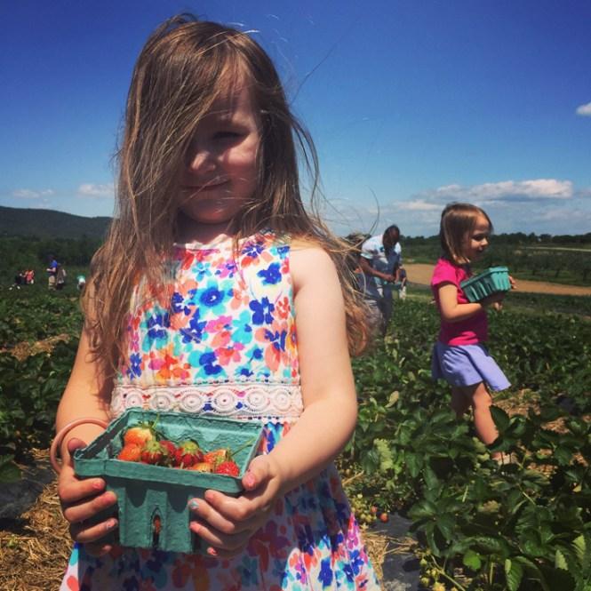 Hudson Valley summer adventure Fishkill Farms
