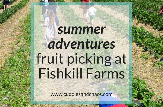 Summer Adventures | fruit picking at Fishkill Farms #hudsonvalley