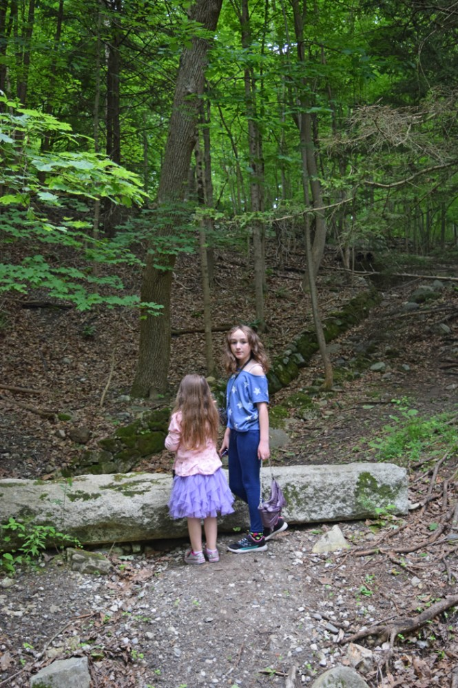 hiking with kids in Westchester Croton Gorge Park