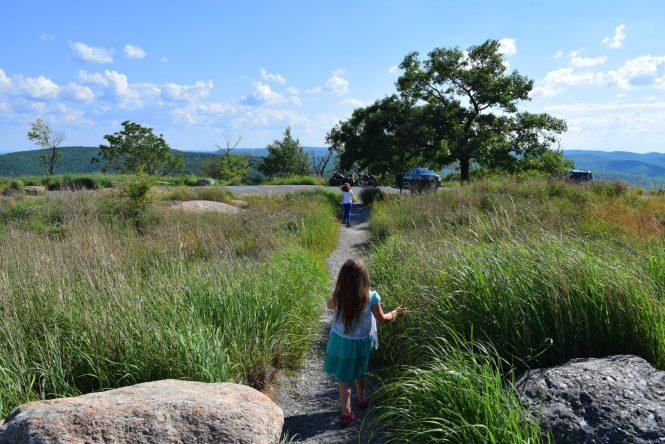exploring at Perkins Memorial Drive