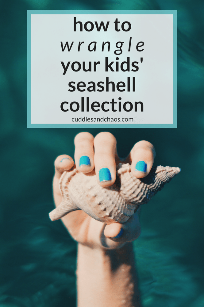 how to wrangle your kids' seashell collection - 3 fun DIYs for the whole family