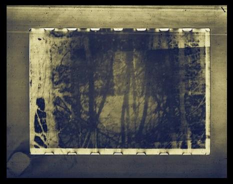 """Shades II,"" analogue/digital hybrid photograph"