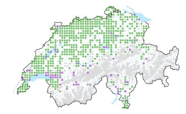 Carte de répartition de l'ail des ours en Suisse. InfoFlora