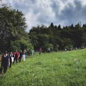 Cours sur les plantes sauvages chalet a gobet, Lausanne, Vaud, Suisse.