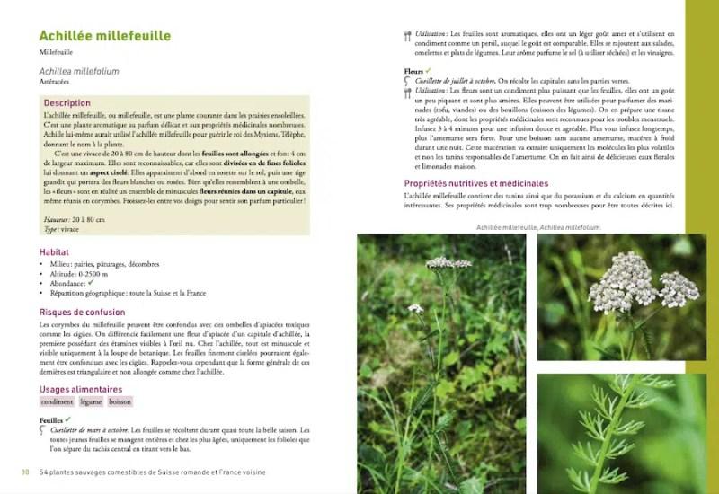 54 plantes sauvages comestibles de Suisse romande et France voisine. Se nourrir des cadeaux de la nature. Michaël Berthoud