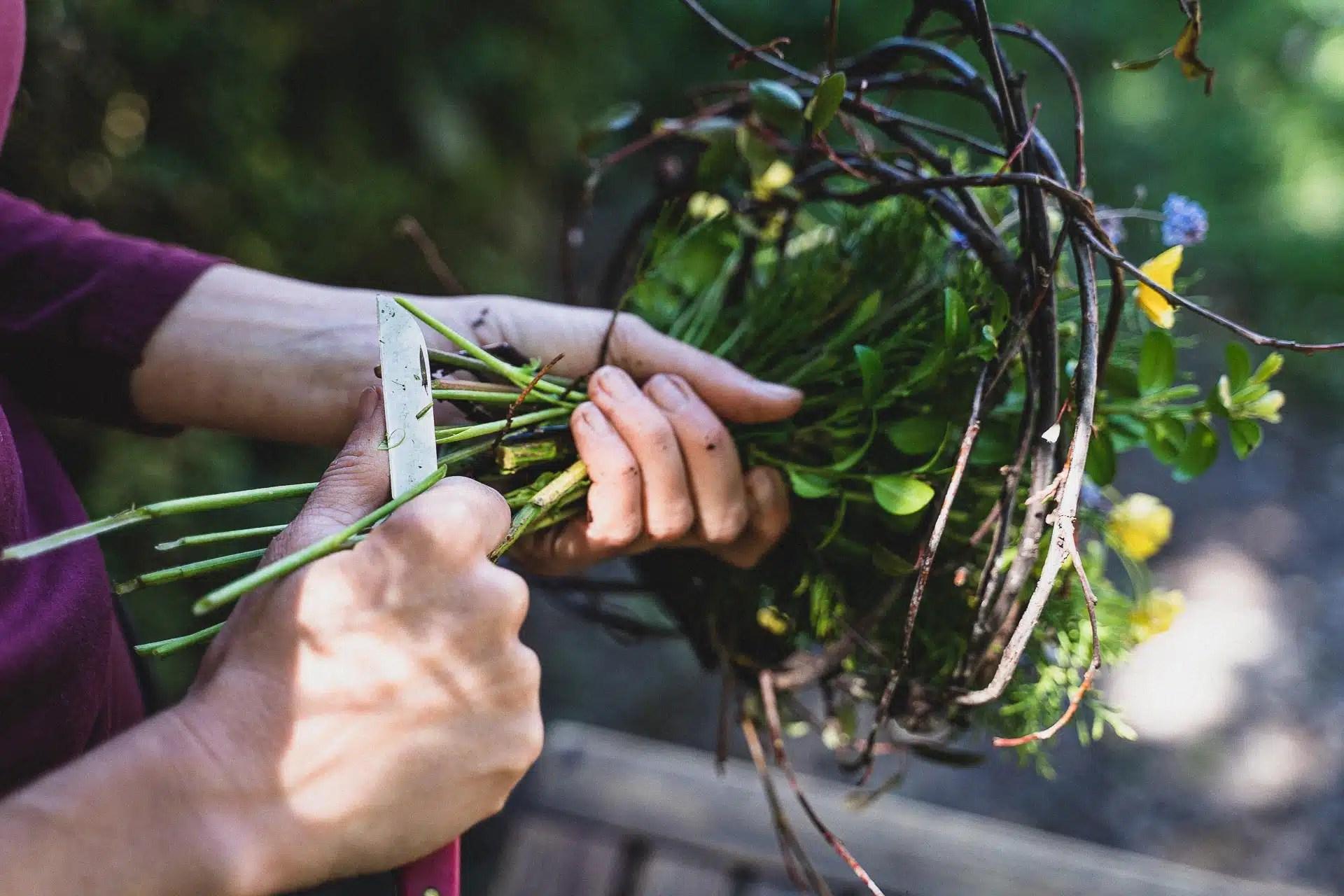 Atelier d'art floral avec Marie. Cueilleurs Sauvages