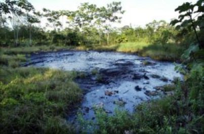 Open oil pit in eastern Ecuador that residents say was left by Texaco.