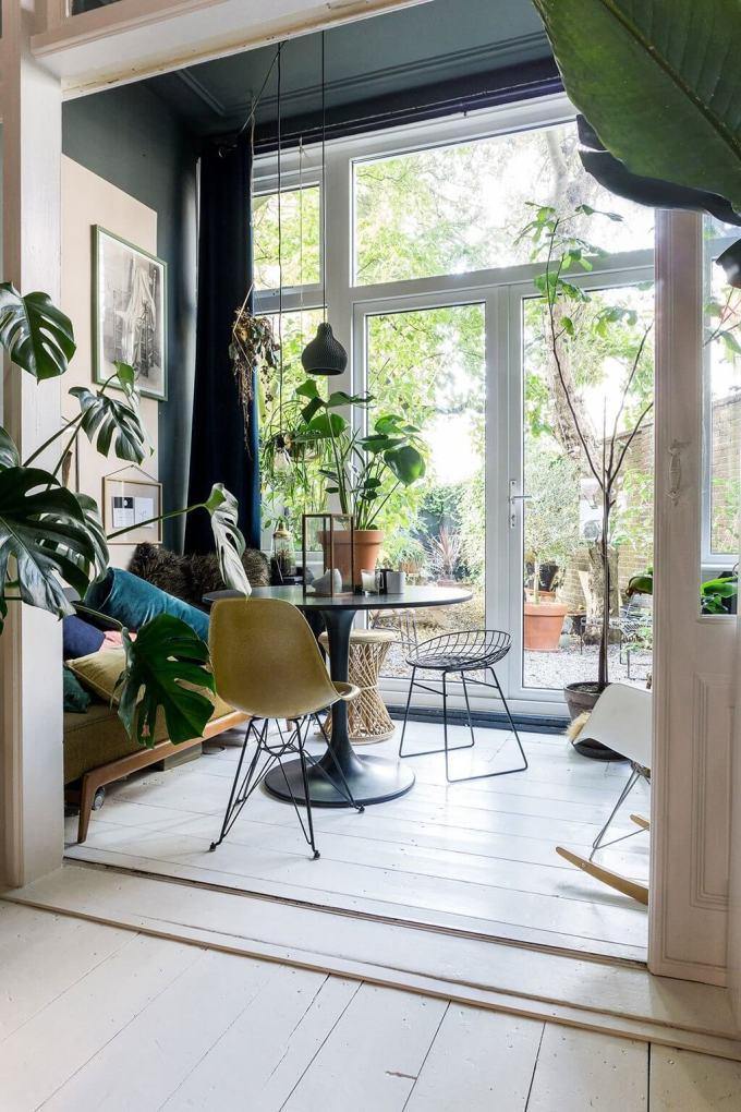 Go Plant Crazy for sun room ideas