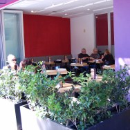 Loteria Grill - Hollywood (Outside eating area)