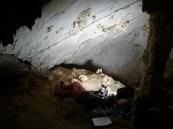 Documentación del arte rupestre