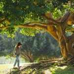 Trucuri naturale pentru creșterea imunității